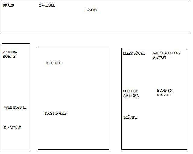 Bepflanzungsplan.jpg